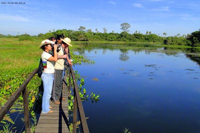Trilha da Vazante - Faz. San Francisco - Pantanal Foto Edir Alves 2011 3