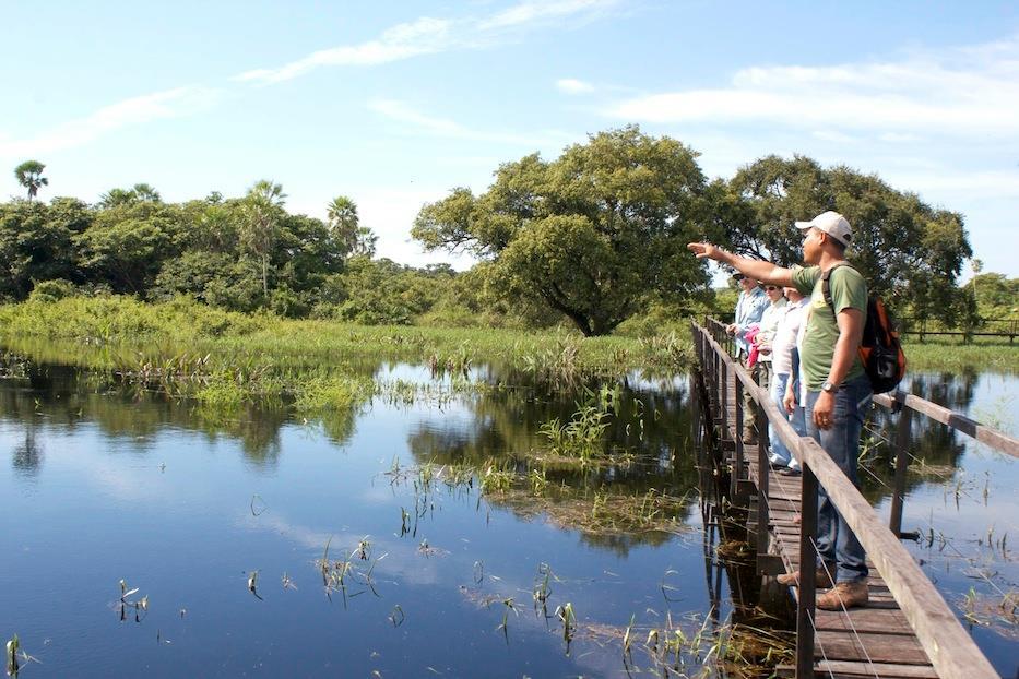 Trilha da Vazante - Faz. San Francisco - Pantanal Foto Roberta Coelho