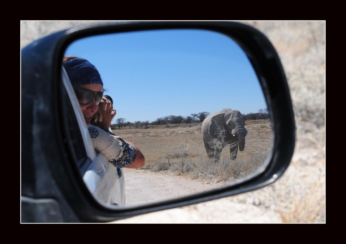 africa e namibia (3)