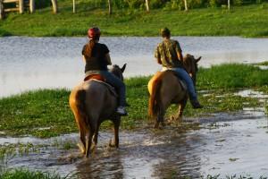 Ion David |Turismo Equestre
